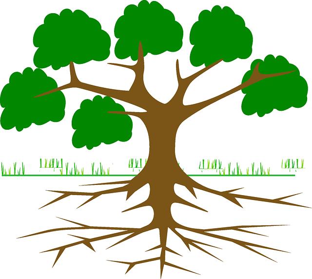 strom s kořeny